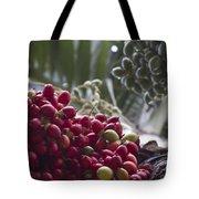 Cocos Nucifera - Niu Mikihilina - Palma - Niu - Arecaceae -  Palmae Tote Bag
