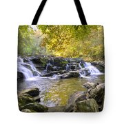 Coker Creek Falls Tote Bag
