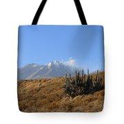 Cold Cactus Tote Bag