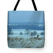 Cold Day In February Tote Bag