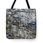 Cold Day In Hell Tote Bag
