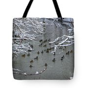 Cold Ducks Tote Bag