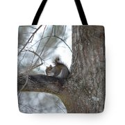 Cold January 2014 Tote Bag