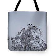 Cold Landing  Tote Bag
