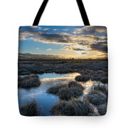 Cold Morning Tote Bag by James Wheeler