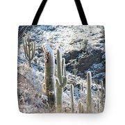 Cold Saguaros Tote Bag