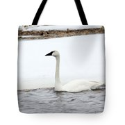 Cold Swim Tote Bag