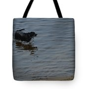 Cold Water Fetch Tote Bag