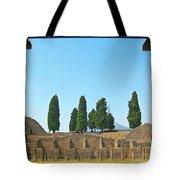 Coliseum At Pompeii Tote Bag