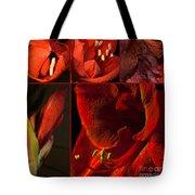 Collage - Amaryllis - Red 01- Elena Yakubovich Tote Bag