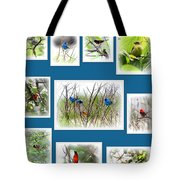 Collage Of Dauphin Island 22 Tote Bag