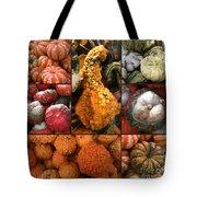 Collage - Pumpkins - Gourds - Elena Yakubovich Tote Bag
