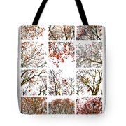Collage The Beauty Of Rowan Tote Bag