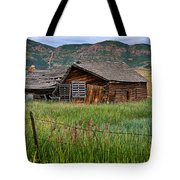 Collapsed Log House In Utah Tote Bag