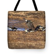 Collecting Mud Tote Bag by Douglas Barnard