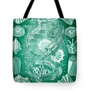 Collection Of Teleostei Tote Bag by Ernst Haeckel