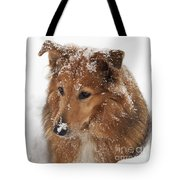 Collie In The Snow Tote Bag