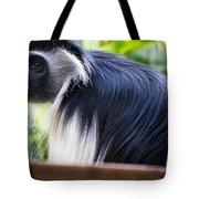 Colobus Monkey Tote Bag