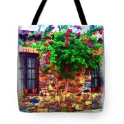 Colonia Del Sacramento Window Tote Bag