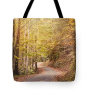 Color And Light Tote Bag