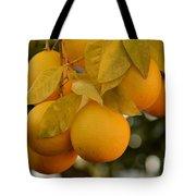 Super Bright Oranges On A Branch Tote Bag