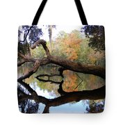 Color Beyond The Branches Tote Bag