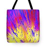 Color Burst Agave Tote Bag