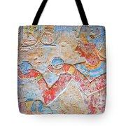 Color Hieroglyph Tote Bag