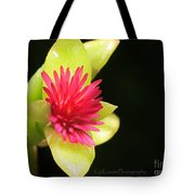 Flower - Delicate As Life Tote Bag