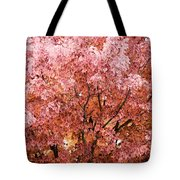 Color In The Tree 03 Tote Bag