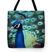 Color Me Peacock Tote Bag