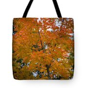Color Of Fall Tote Bag