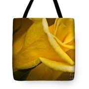 Color Of Friendship Tote Bag