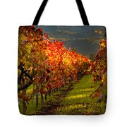 Color On The Vine Tote Bag by Bill Gallagher