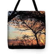 Color Through The Trees Tote Bag