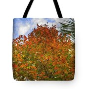 Color To The Sky Tote Bag