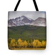 Colorado's Playground Tote Bag