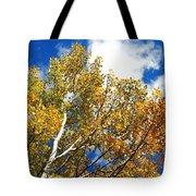Colorado Aspens And Blue Skies Tote Bag