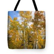 Colorado Autumn Aspens  Tote Bag