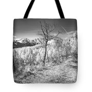 Colorado Backcountry Autumn View Bw Tote Bag by James BO  Insogna