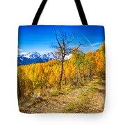 Colorado Backcountry Autumn View Tote Bag