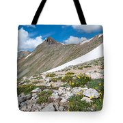 Colorado Elkhead Pass Tote Bag