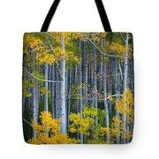 Colorado Fall Color Tote Bag