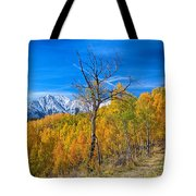 Colorado Fall Foliage Back Country View Tote Bag