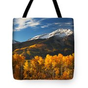 Colorado Gold Tote Bag by Darren  White