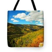 Colorado In Autumn Tote Bag