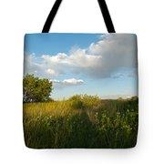Colorado June Evening Landscape Tote Bag