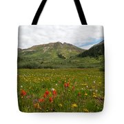 Colorado Meadow And Mountain Landscape Tote Bag
