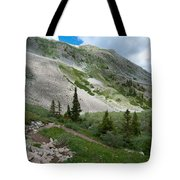 Colorado Mountain Landscape Tote Bag