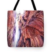 Colorado Mountains Garden Of The Gods Canyon Tote Bag